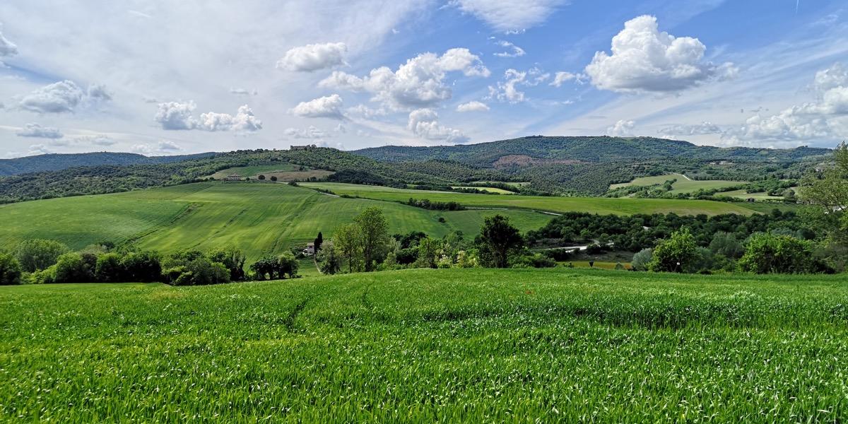 Un panorama della valle su cui insistono i terreni di proprietà di Azienda Agricola Augusto Coli
