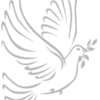 colomba-grey